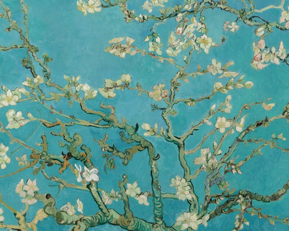 Branches with Almond Blossom product image